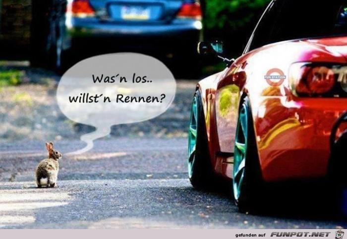 wasn-los