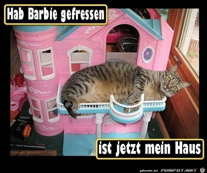 Barbie gefressen
