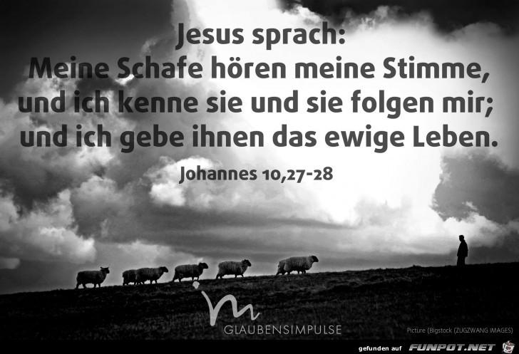 Johannes 10 27-28