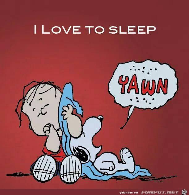 I love to sleep