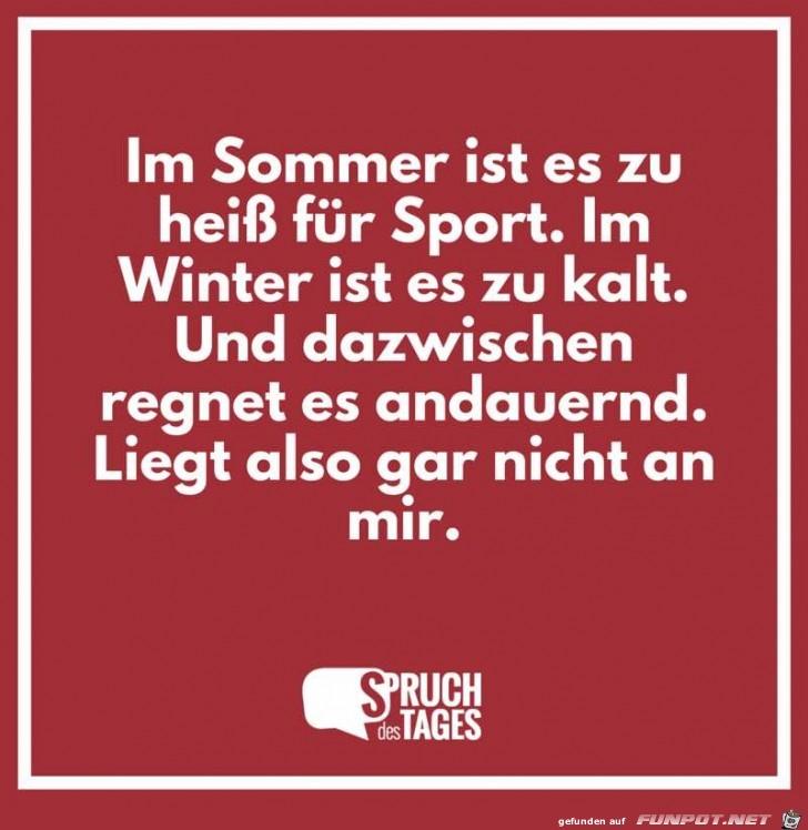 im-sommer-ist-es-zu-heiss-