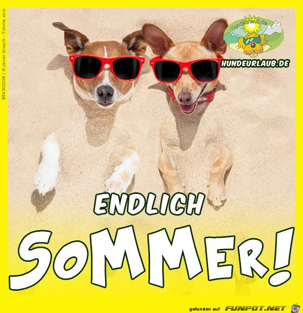 Endlich Sommer