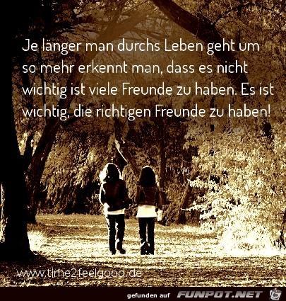 Richtige Freunde