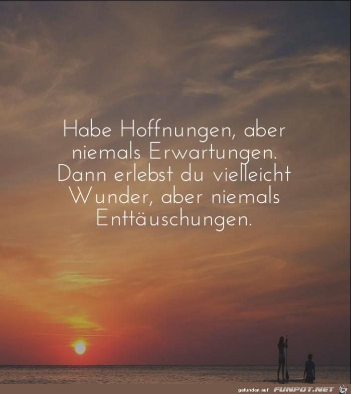 habe-hoffnungen-