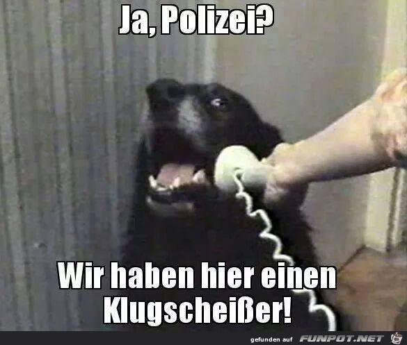 Ja Polizei