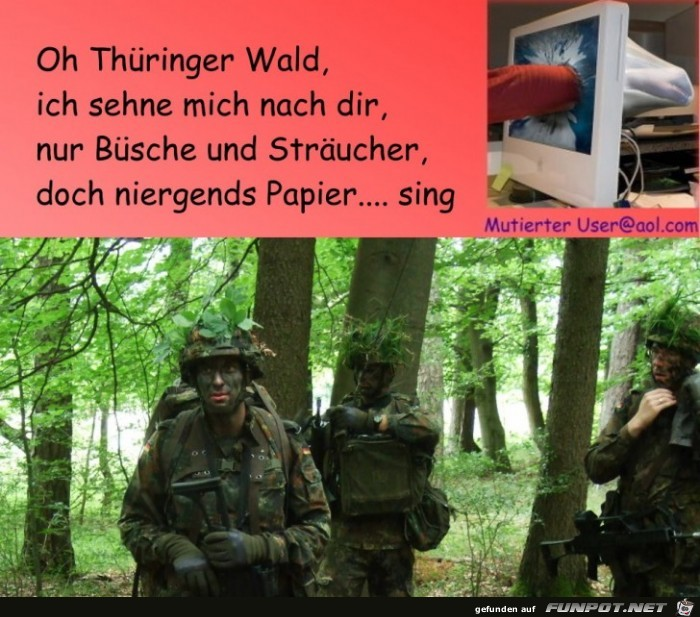 Thueringer Wald