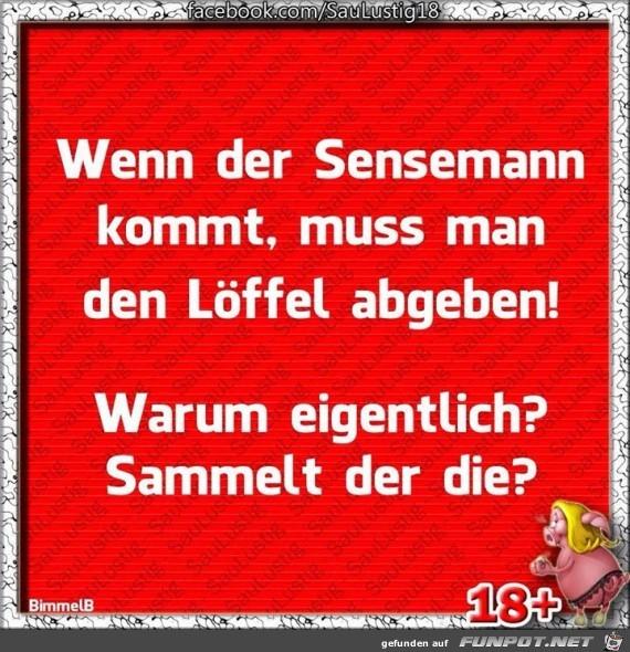 Sensemann
