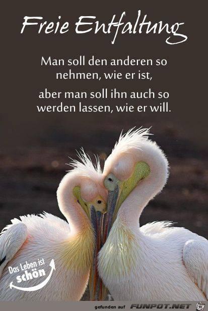 schöne Sprüche zur Liebe und Partnerschaft