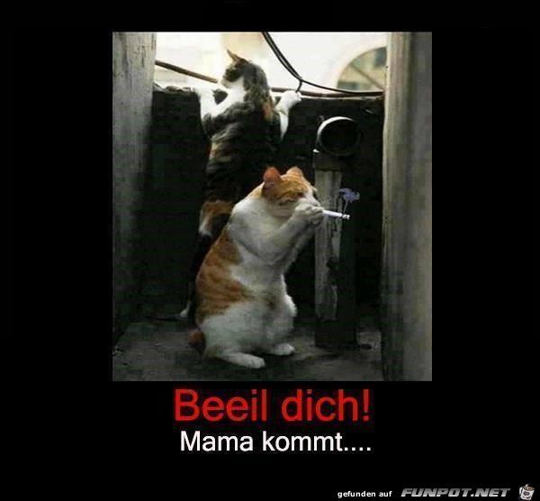 Mama kommt