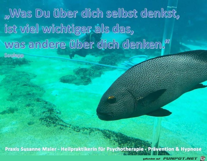 was du ueber dich selbst