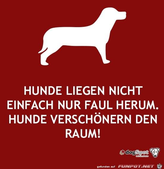 hunde...