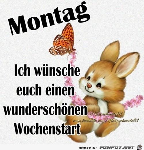 montag263