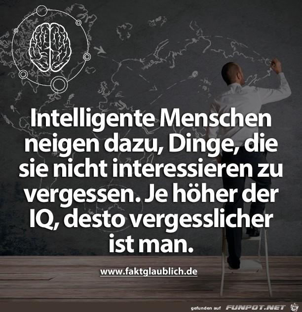 Intelligente Menschen