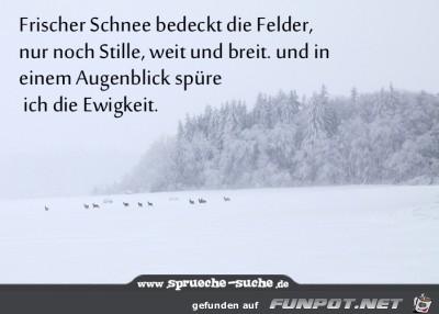 frischer-schnee-bedeckt-die-felder-nur-noch-s