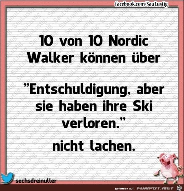 10 von 10 Nordic Walker