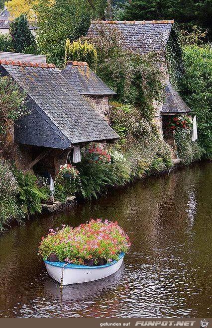 ein Boot mit Blumen