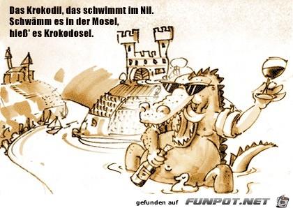 Illustration-Krokodo