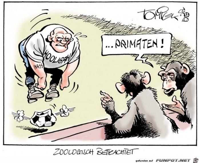 Primaten unter zoologischer Sicht