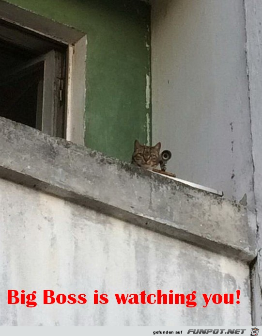 Du wirst beobachtet