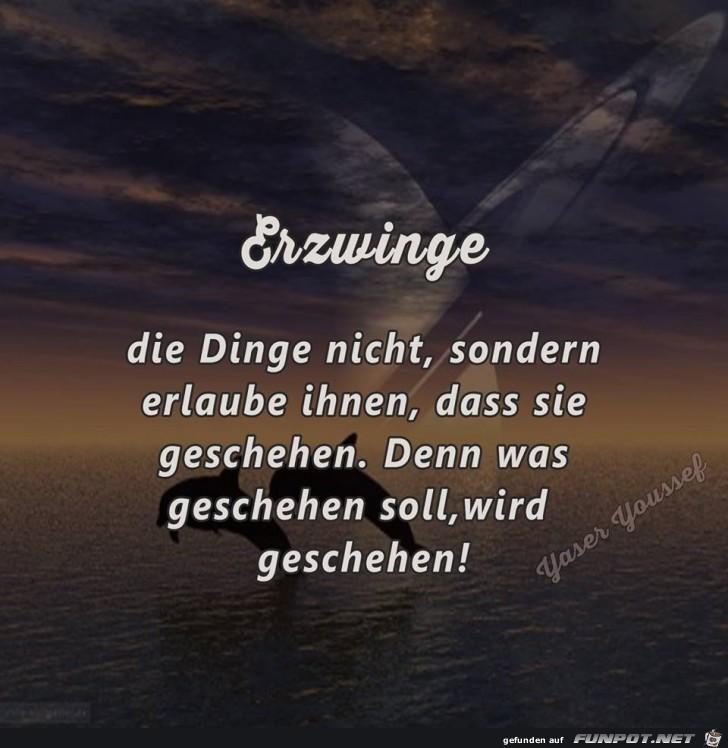 Erzwinge
