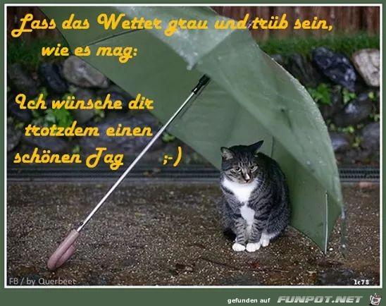Lass das Wetter