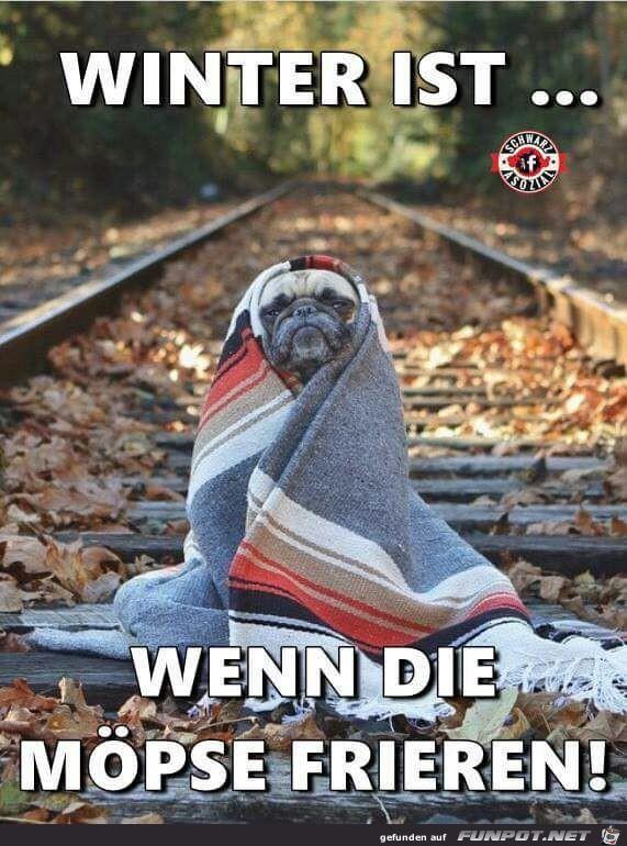 Winter ist...