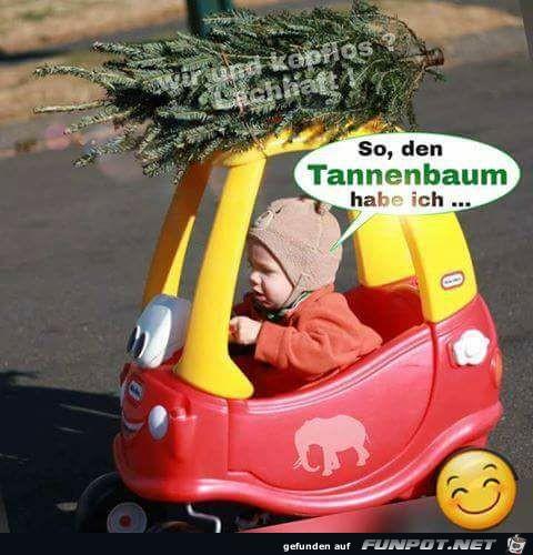 So den Tannenbaum hab ich