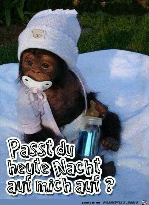 Passt-du-heute-Nacht.jpg auf www.funpot.net