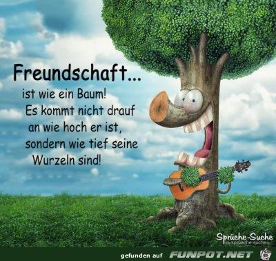 Freundschaft ist wie ein Baum.....