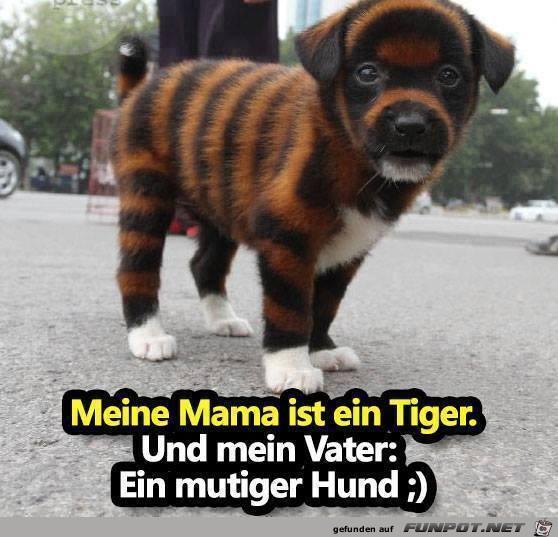 Meine Mama ist ein Tiger