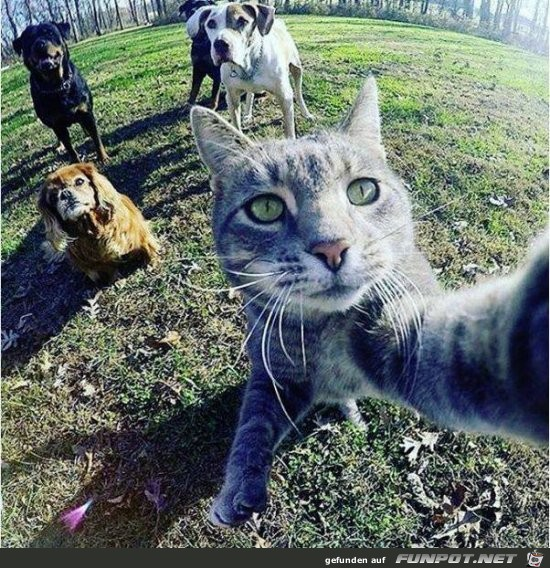 Super Selfie