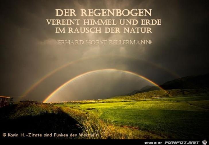Regenbogen zitate
