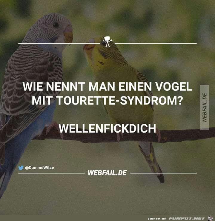 Vogel mit Tourette