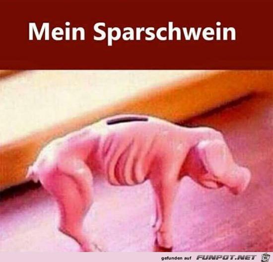 Mein Sparschwein