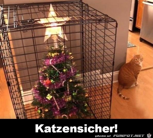 Katzensicher
