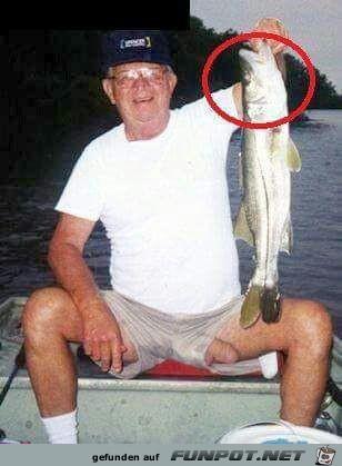 Was für ein grosser Fisch