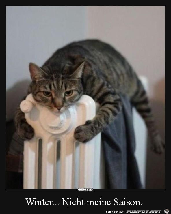 Winter.......nicht meins......