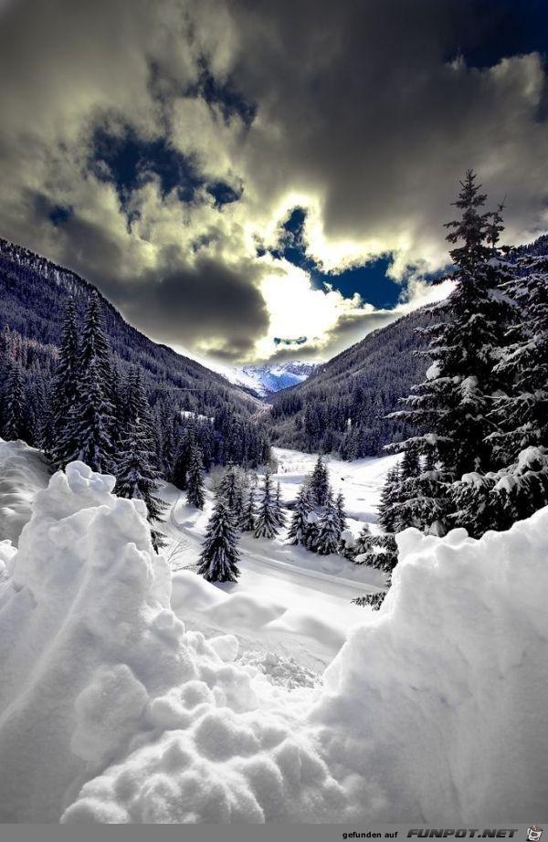 Stimmungsvolles Winterbild