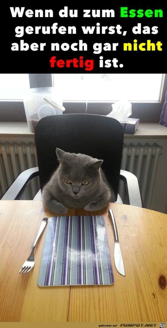 Ich hab Hunger