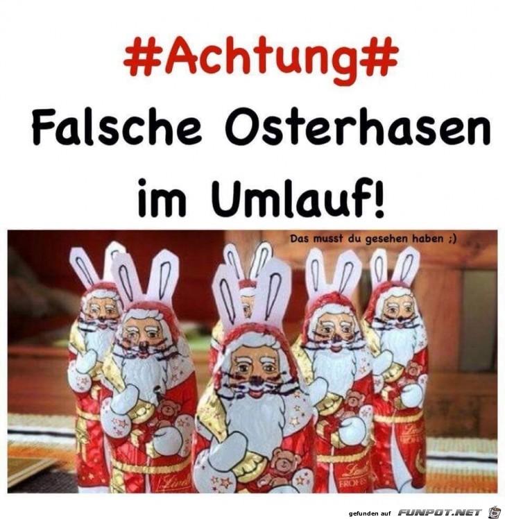 Falsche-Osterhasen.jpg auf www.funpot.net