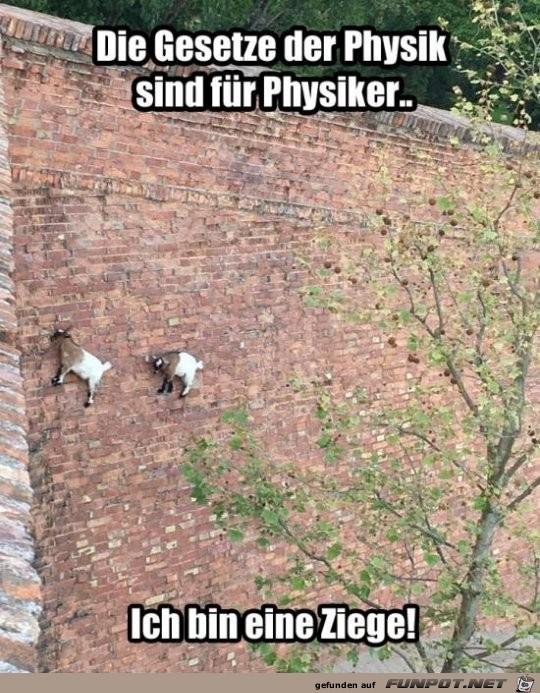 Super Kletterer