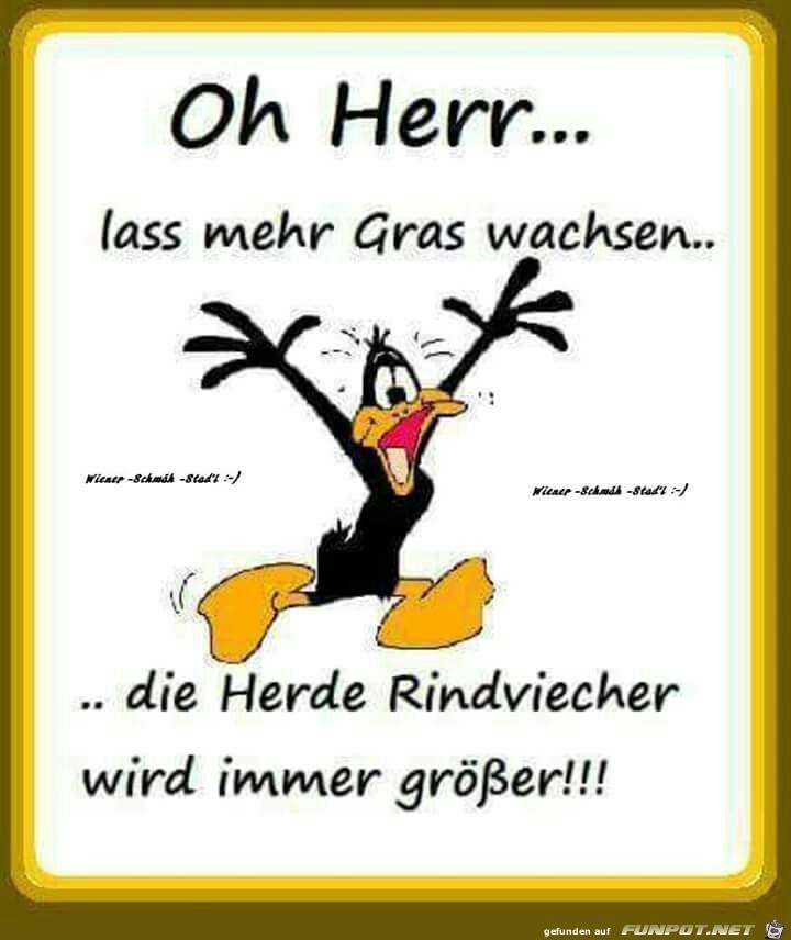 Oh Herr...