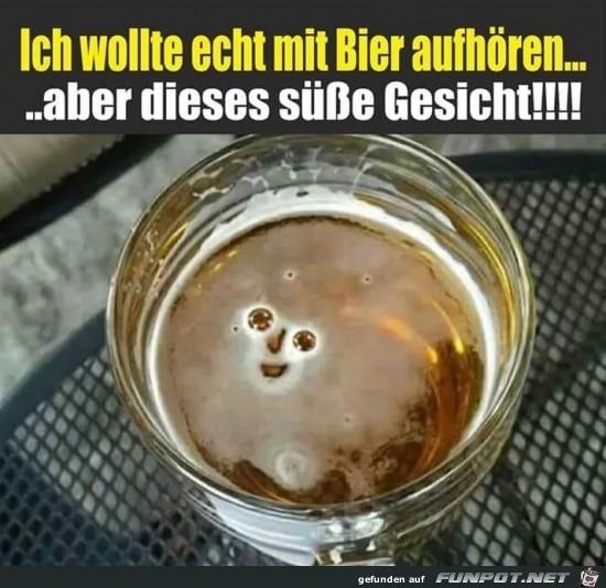 Diese drollige Bier-Gesicht