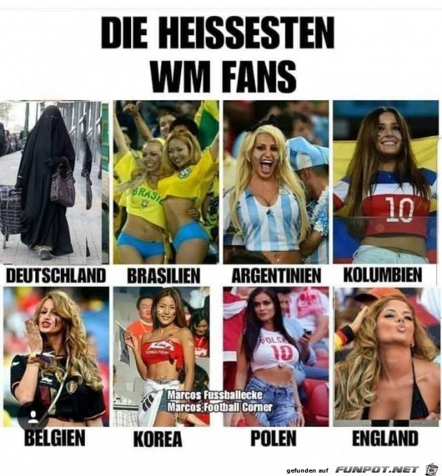 WM Fans