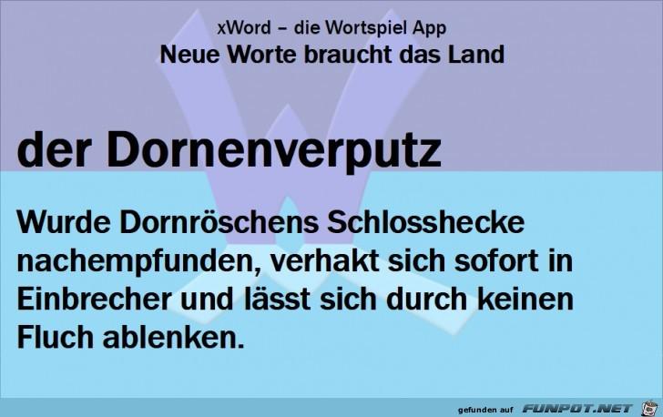 Neue-Worte-Dornenverputz