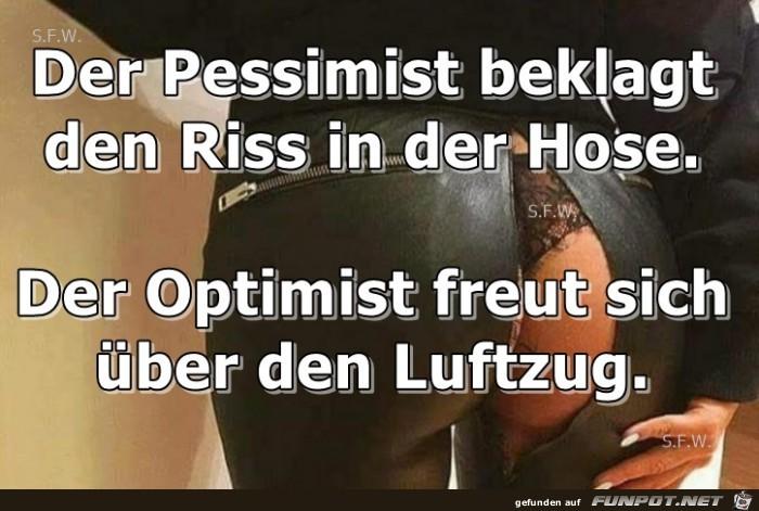 Der Pessimist