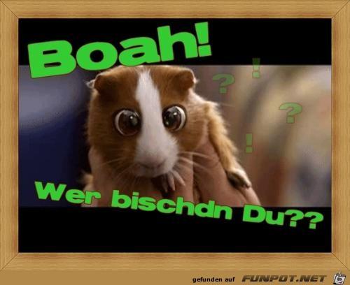 Boah......