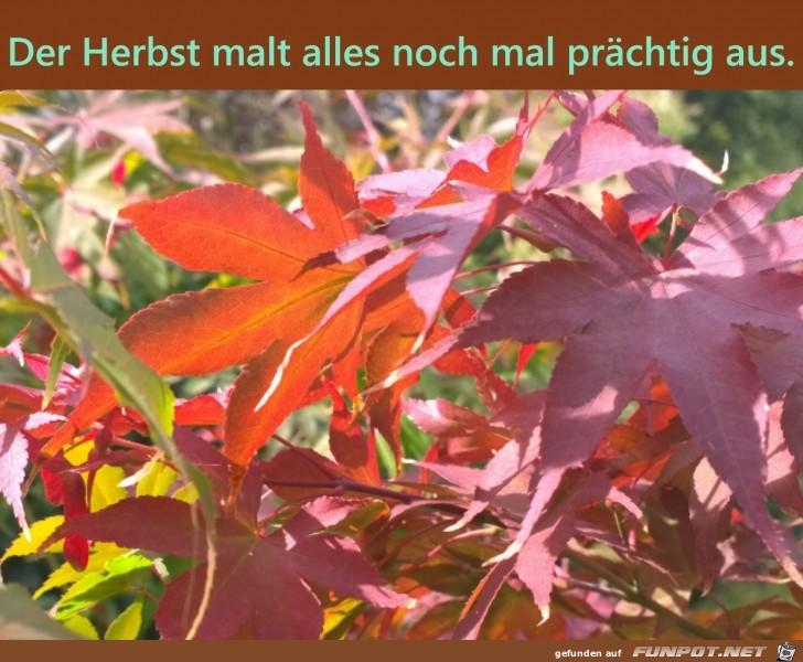 Der Herbst malt alles nochmal prächtig aus.