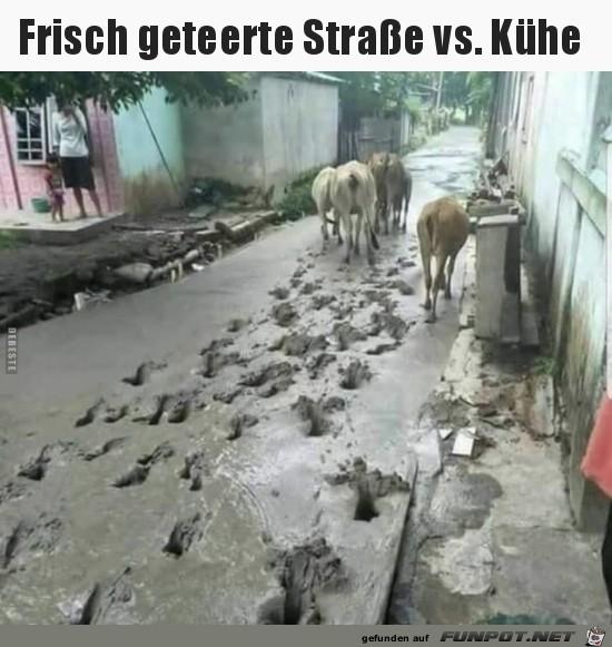 frisch geteerte Strasse......