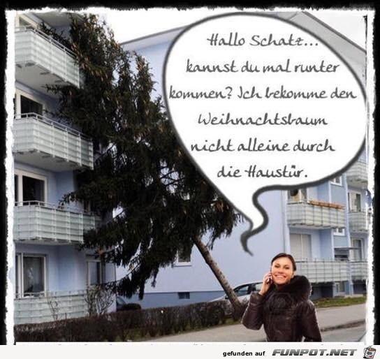 Etwas-zu-groß-der-Baum.jpg auf www.funpot.net